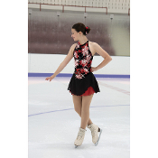 Jerry's 108 Chelsea Rose Figure Skating Dress